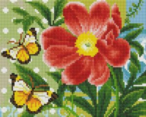 Бабочки и цветок