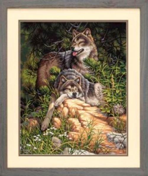 Дикие и свободные волки-раскраска